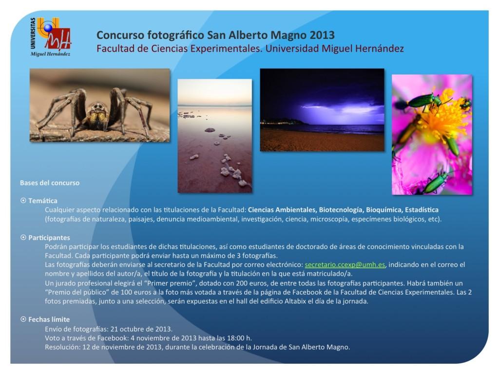 Concurso San Alberto Magno 2013
